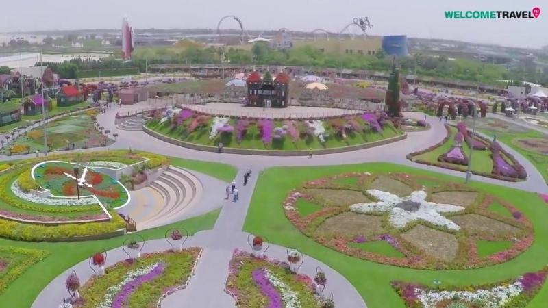 Дубай ОАЭ парк цветов с высоты птичьего полета