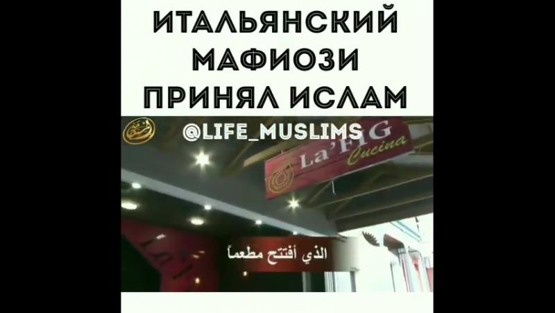 лучшие в джахилии лучшие в исламе