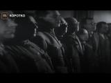 Марию Алехину задержали уздания ФСБ сплакатом «Сднем рождения,