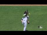 Орел приземлился