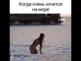 Девушка плавает во льдах (480p).mp4