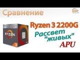 Сравнение Ryzen 3 2200G с A12-9800, Core i3-7100 и Core i3-8100: Рассвет