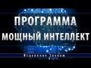 Программа Мощный Интеллект Школа Космомагов Игоря Андреева