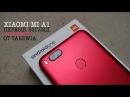 БИТВА КРАСНЫХ! Xiaomi Mi A1 vs. Infinix Zero 5. RED'S.
