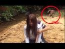 Top 5 Misteriosas Criaturas Extrañas Captadas En Video - Criaturas Raras