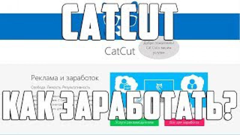 Catcut как заработать? Catcut заработок на сайте