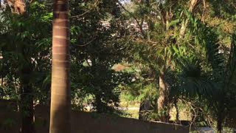 Trem: Não Há no Quintal. Tiguera 360. Juiz de Fora, MG, Brasil. IMG_7782. 133,5 MB. 08h16. 11out17