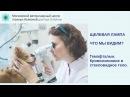 Гемофтальм кровоизлияние в стекловидное тело у кошки после падения с 10 этажа видео щелевой лампой