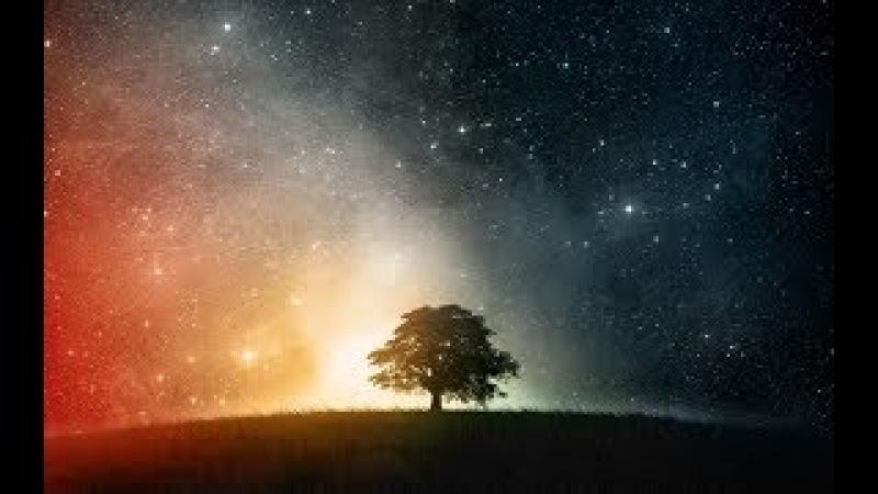 Часть 2 | ОПЫТЫ над ЛЮДЬМИ. Как забрали наш РАЙ. Цивилизация СВЕТА.
