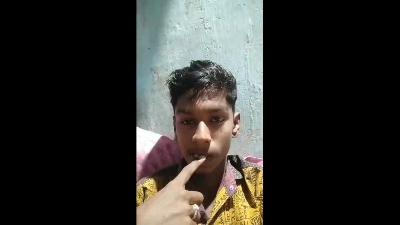 Shib Malua Live