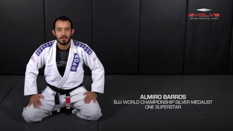 5 Sweeps from Spider Guard - Almiro Barros