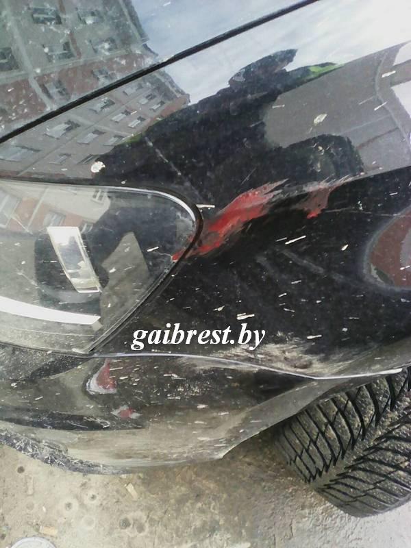 В центре Жабинки детеныш оленя врезался в автомобиль