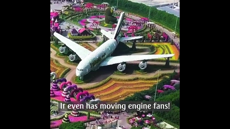 Emirates_A380_in_Dubai_Miracle_Garden.mp4