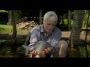 Discovery.Rechnye.monstry.(3.sezon.1.serija.iz.7.).Kastrator.2011.XviD.SATRip