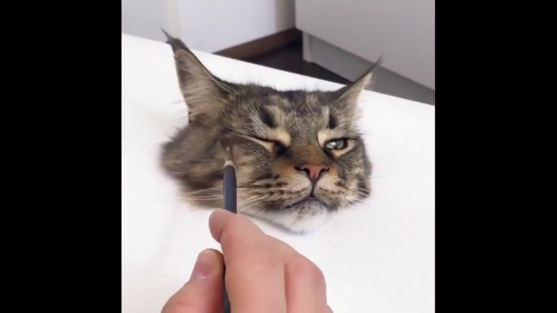 Художник, что рисует кись