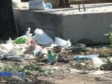Экологическая проблема г. Дивногорска