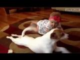 Когда лучший друг учит ползать)))