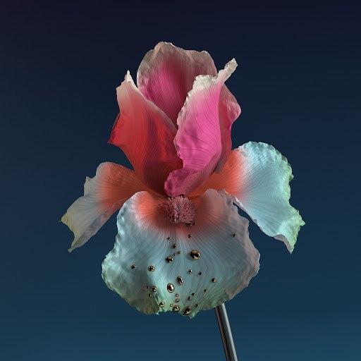 Flume альбом Skin: The Remixes