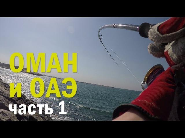 Таких рыб я еще не ловил! Рыболовное приключение в Омане и ОАЭ. ч. 1