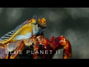 Lightfoot crabs ambushed by eels and octopuses Blue Planet II Episode 6 Preview BBC One