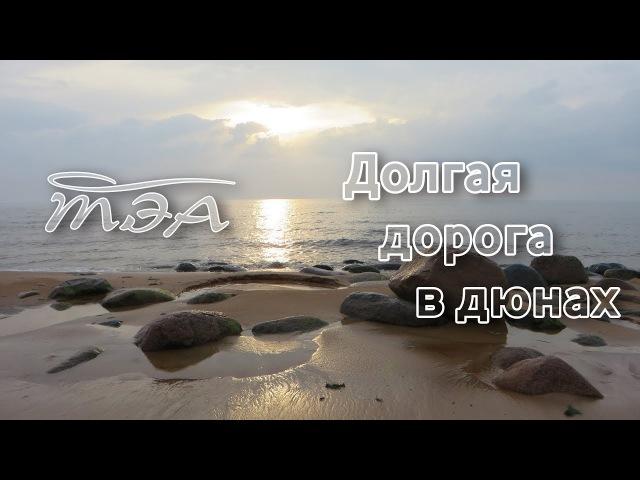 ТЭА | Долгая дорога в дюнах