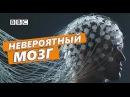 Что такое реальность Документальный фильм BBC