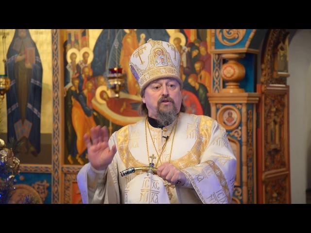 Проповедь митрополита Иоанна в Неделю 33-ю по Пятидесятнице, по Богоявлении