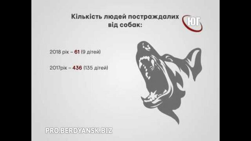 БЕРДЯНСК 2018 Озвірілі зоозахисники 2018 02 20