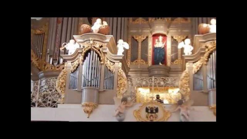 Кафедральный собор. Концерт органной музыки. 2016