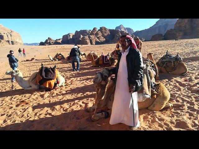 Бедуины и верблюды в пустыне Вади-Рам