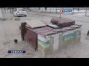 У Дніпрі збудували зимовий дім для безпритульних собак