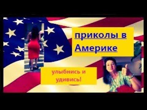 Американская нарезка приколов: товары, американцы, природа!
