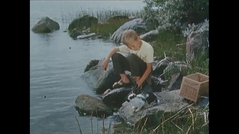 На острове Сальткрока. 9-серия.