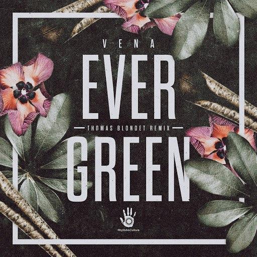 VENA альбом Evergreen