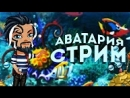 СТРИМ АВАТАРИЯ/МНОГО ТРОЛЛИНГА/ИГРАЕМ В ВК.