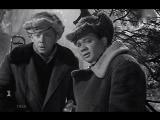 Сказки русского леса 1966, СССР, музыкальная комедия ( Голубой огонёк )