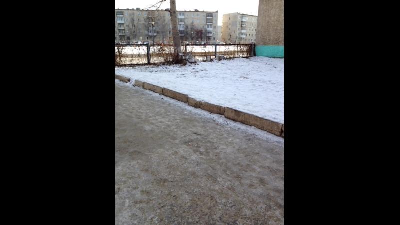 Екатерина Винер — Live