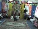 Утренник в детском саду. Индия отдыхает.