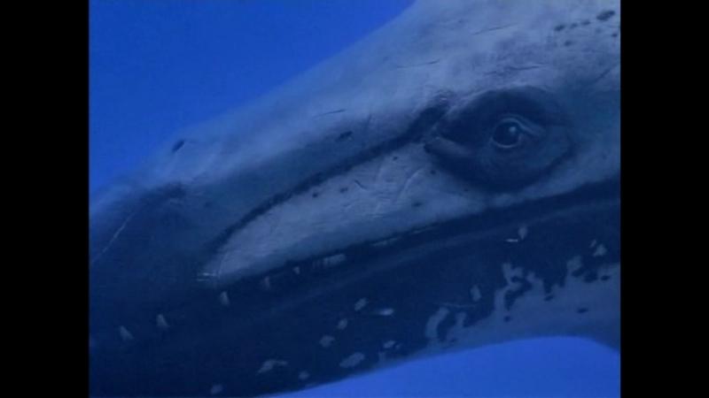 BBC Прогулки с Чудовищами - Киты-Убийцы (BBC: Walking with Beasts - Killer Whales)(2001)