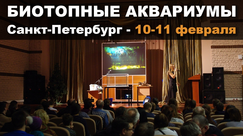 Анонс конференции