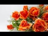 [v-s.mobi]Поздравить с днем рождения ! Музыкальная открытка видео поздравление с пожеланиями !.mp4