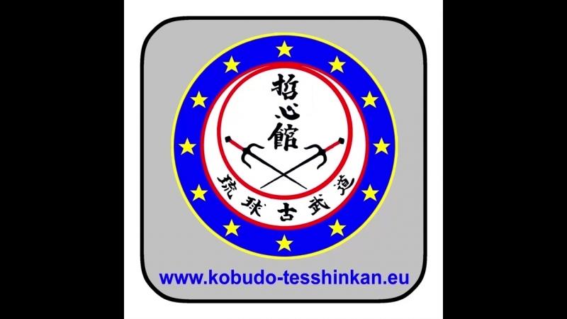 Bô-no-Kihon no. 5- Jôdan-Nuki Chûdan-Tsuki