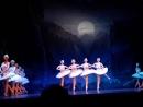 Отрывок из балета Лебединое озеро - танец маленьких лебедей