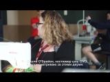 OVO от Cirque du Soleil: Как устроен тур