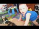 Смешное видео! Дети и животные