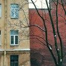 Дмитрий Витушкин фото #48