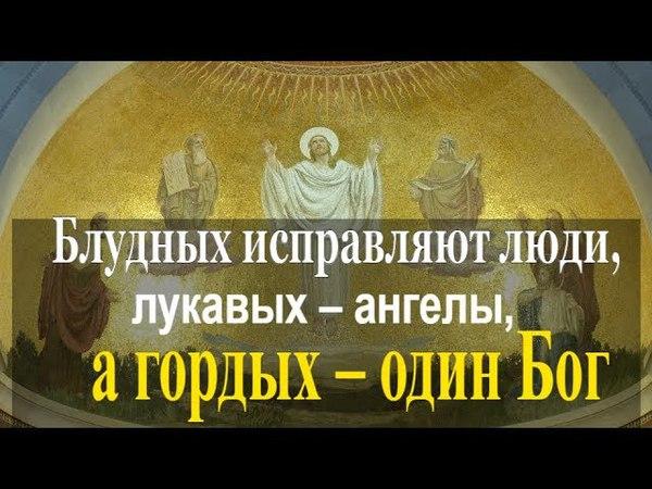 Блудных исправляют люди, лукавых – ангелы, а гордых – один Бог - Святые Отцы⛪☘️