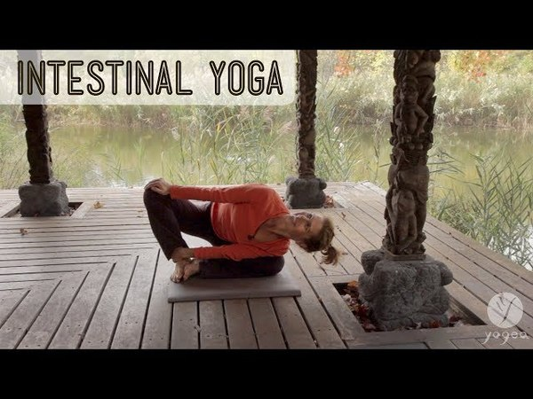 Yoga for Intestinal Health: Alkalize (open level)