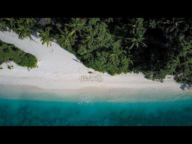Maldives Hanifaru Bay Mantas 2017 DJI Mavic Pro