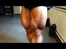 PUSH THROUGH PAIN - LEG DAY BODYBUILDING MOTIVATION